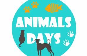 Fundacja Towarzystwo Weterynaryjne Partnerem Animals Days
